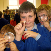 Children using magnifying glasses