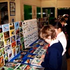 Children studying displays